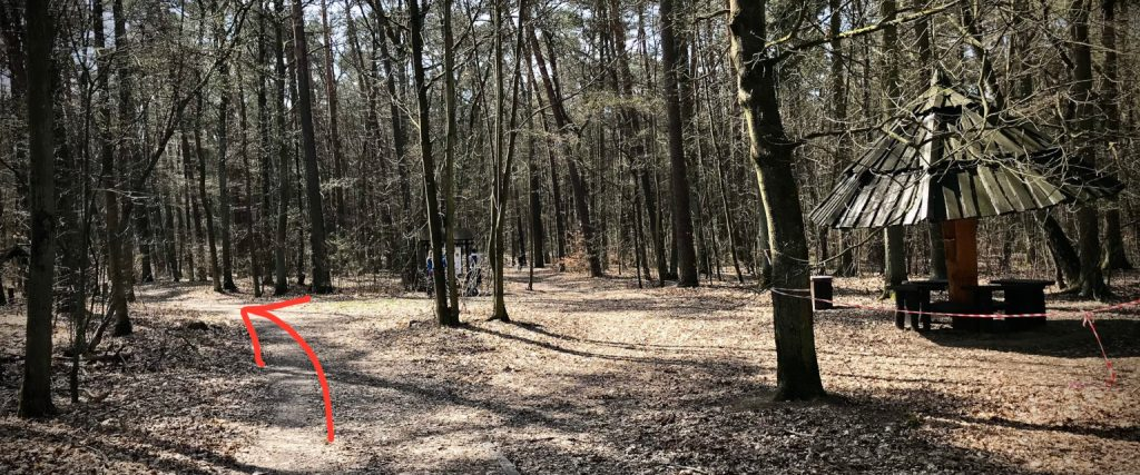 Las Puszczykowo