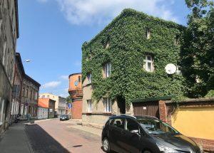 Zielony dom w Śremie