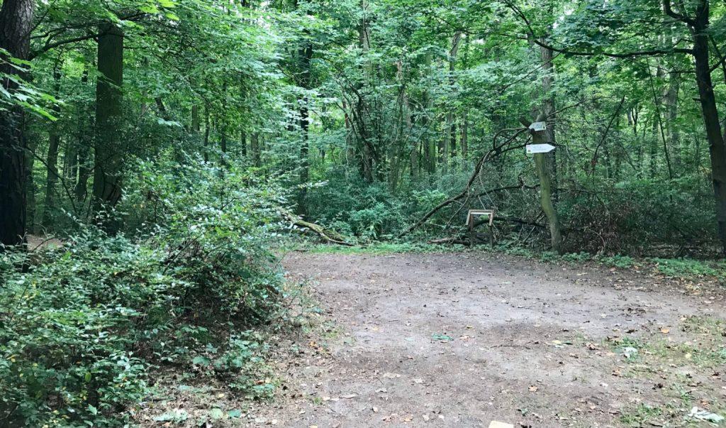 Szlak Zielony Wielkopolski Park Narodowy